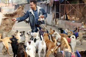 Dog Shelter in Delhi